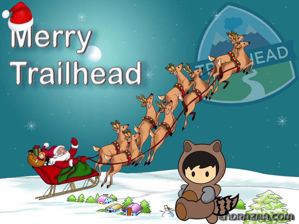Merry Trailhead - 2015