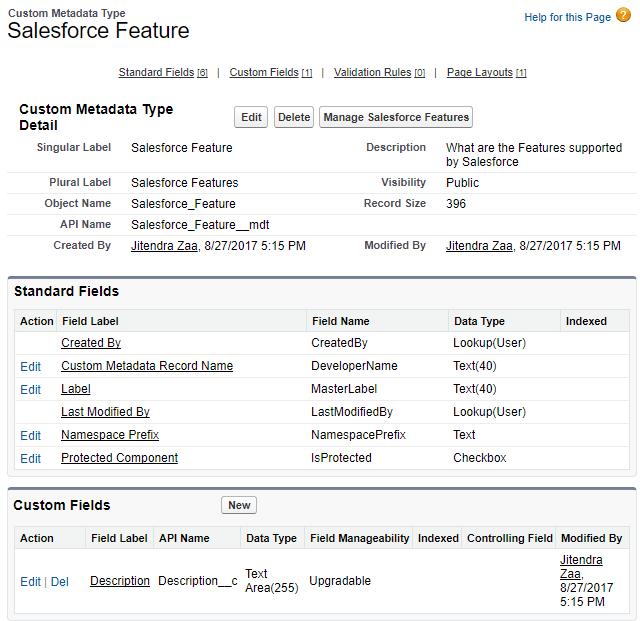 Salesforce Custom Metadata Type Schema
