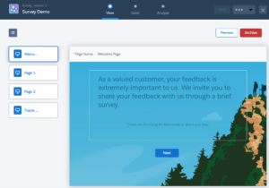 Salesforce Survey Demo Screen 1