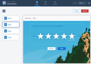 Salesforce Survey Demo Screen 2